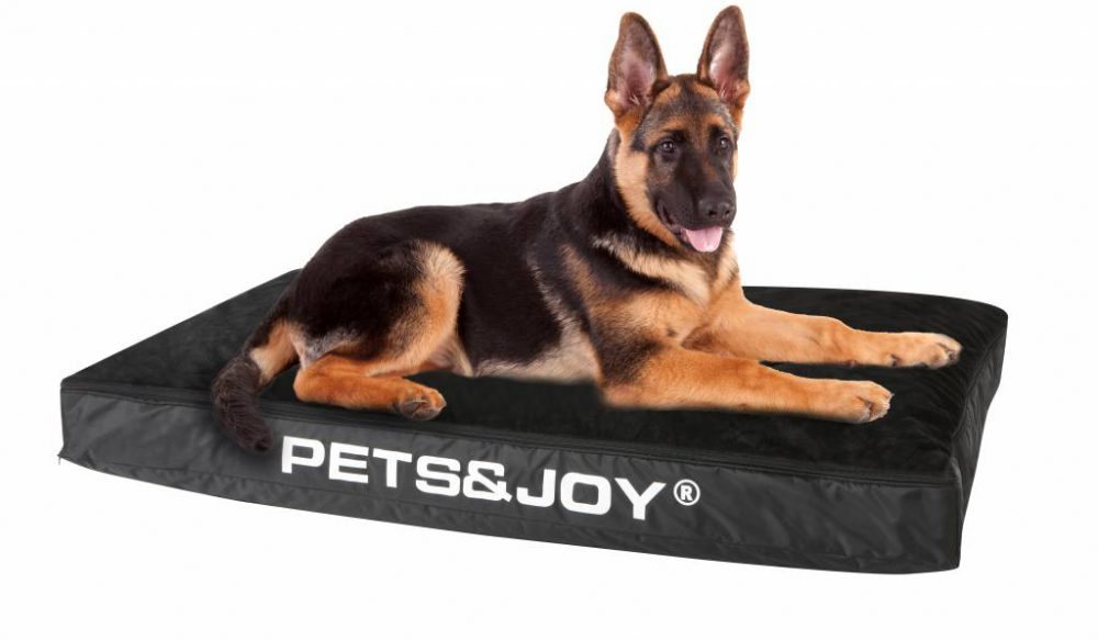 Dog Bed Large Zwart 2